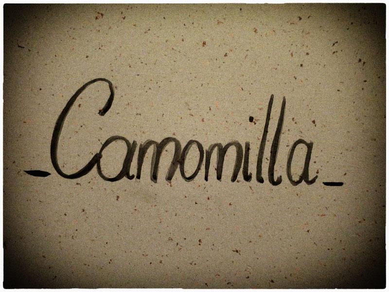 Mansarda Camomilla