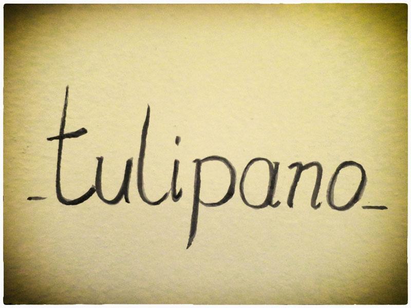 Tulipano - camera per famiglia